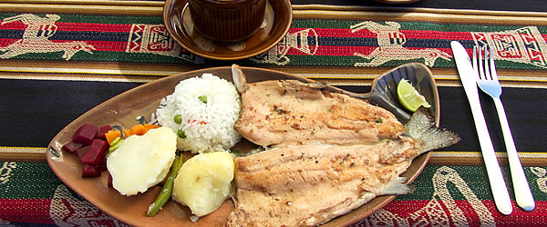 Curso de Gastronomía Andina